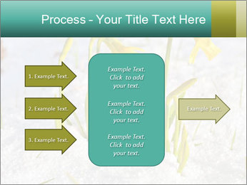 0000087383 PowerPoint Template - Slide 85