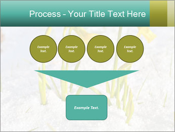 0000087383 PowerPoint Template - Slide 93