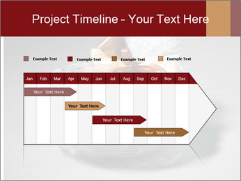 0000087391 PowerPoint Template - Slide 25