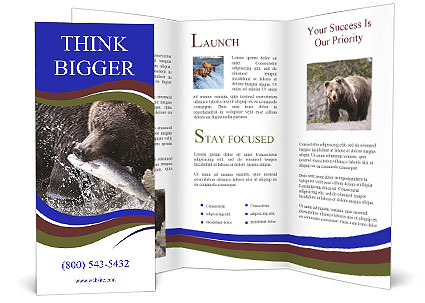 0000087396 Brochure Templates