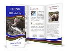 0000087396 Brochure Template