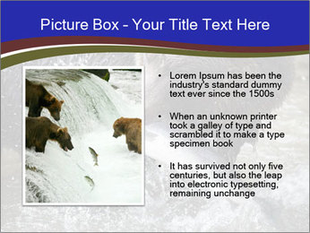 0000087396 PowerPoint Template - Slide 13
