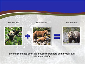Brown Bear PowerPoint Templates - Slide 22