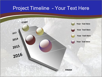 0000087396 PowerPoint Template - Slide 26