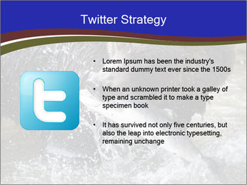 Brown Bear PowerPoint Templates - Slide 9