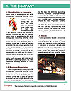 0000087401 Word Template - Page 3