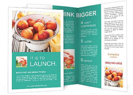 0000087404 Brochure Templates