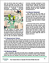 0000087405 Word Templates - Page 4