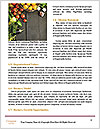 0000087406 Word Templates - Page 4