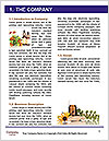 0000087410 Word Templates - Page 3