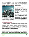 0000087412 Word Template - Page 4