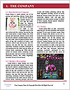 0000087418 Word Template - Page 3