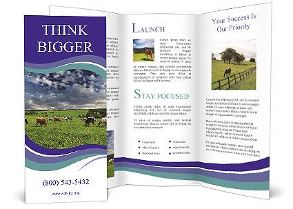 0000087420 Brochure Templates