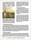 0000087423 Word Template - Page 4