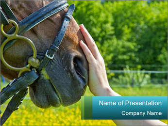 Horse PowerPoint Templates - Slide 1