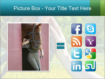 Horse PowerPoint Templates - Slide 21