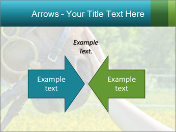 Horse PowerPoint Templates - Slide 90