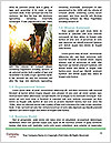 0000087438 Word Template - Page 4