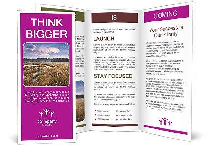 0000087440 Brochure Template