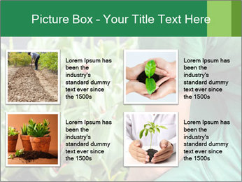 0000087441 PowerPoint Template - Slide 14