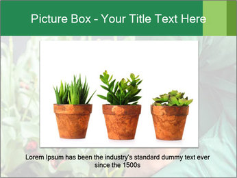 0000087441 PowerPoint Template - Slide 15