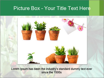 0000087441 PowerPoint Template - Slide 16