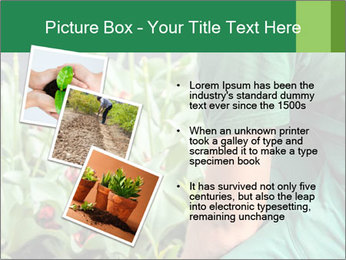 0000087441 PowerPoint Template - Slide 17