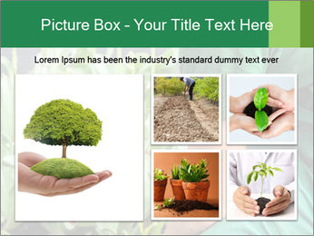 0000087441 PowerPoint Template - Slide 19