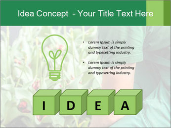 0000087441 PowerPoint Template - Slide 80