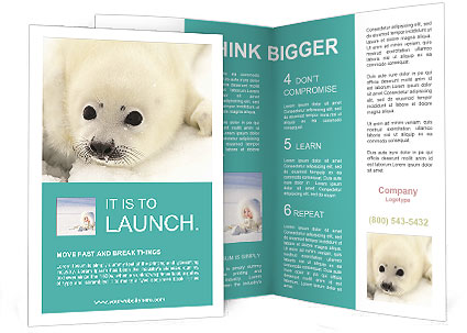 0000087442 Brochure Template