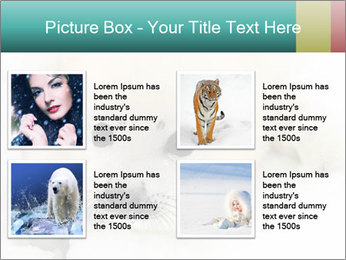 Baby harp seal pup PowerPoint Template - Slide 14