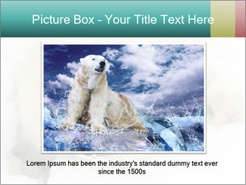 Baby harp seal pup PowerPoint Template - Slide 15