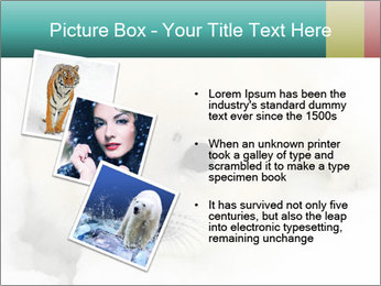 Baby harp seal pup PowerPoint Templates - Slide 17