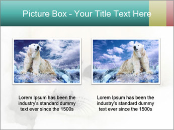 Baby harp seal pup PowerPoint Templates - Slide 18