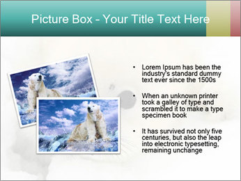 Baby harp seal pup PowerPoint Template - Slide 20
