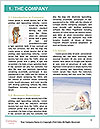 0000087442 Word Template - Page 3