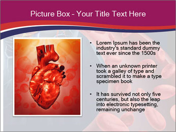 Heart blood PowerPoint Template - Slide 13