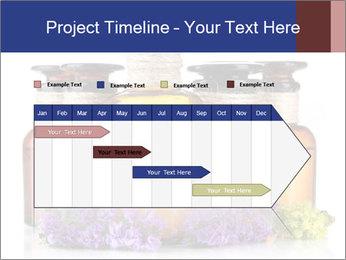 0000087451 PowerPoint Template - Slide 25