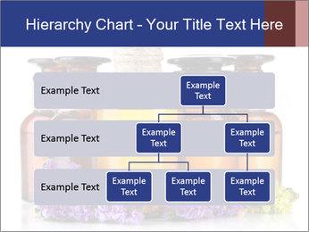 Medicine bottles PowerPoint Template - Slide 67