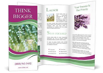 0000087457 Brochure Template