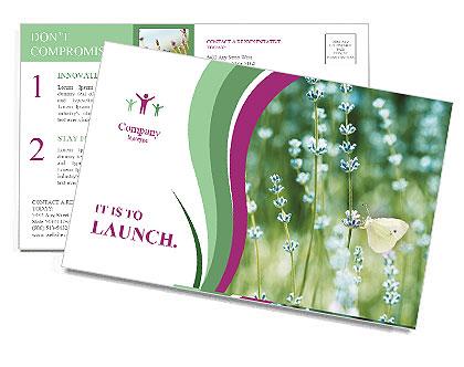 0000087457 Postcard Template