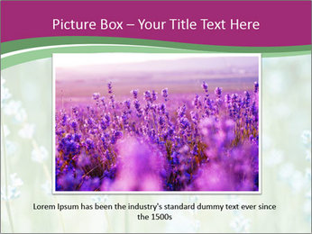 Butterfly PowerPoint Templates - Slide 15