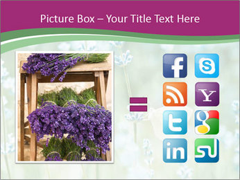 Butterfly PowerPoint Templates - Slide 21