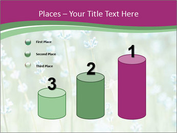 Butterfly PowerPoint Templates - Slide 65