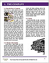0000087458 Word Templates - Page 3