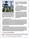 0000087458 Word Templates - Page 4