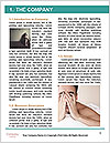 0000087465 Word Template - Page 3