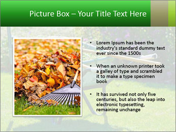 0000087475 PowerPoint Template - Slide 13