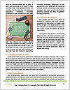 0000087477 Word Template - Page 4