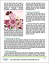 0000087478 Word Templates - Page 4